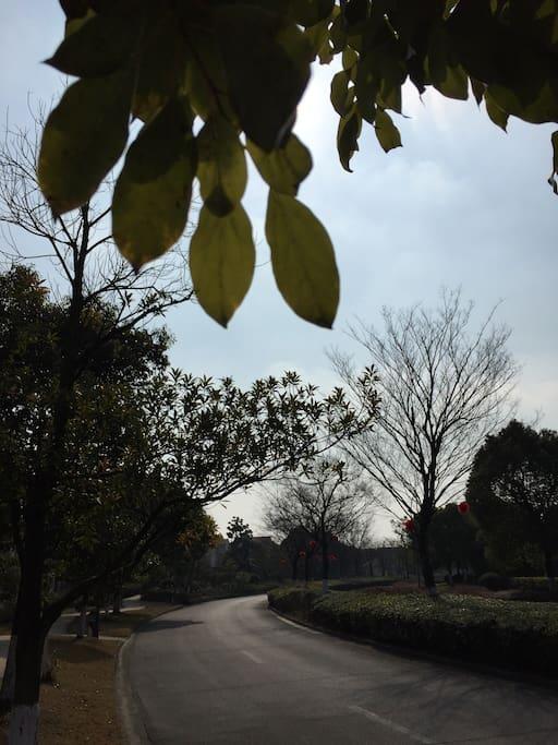 Inner drive road
