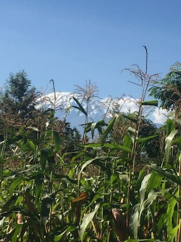You can view kilimanjaro mountain from my house