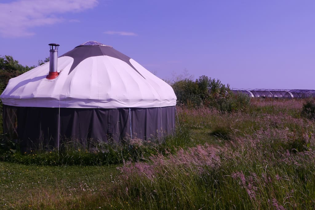 The small yurt, positioned away from the main yurt circles for more privacy - www.high-nature.co.uk