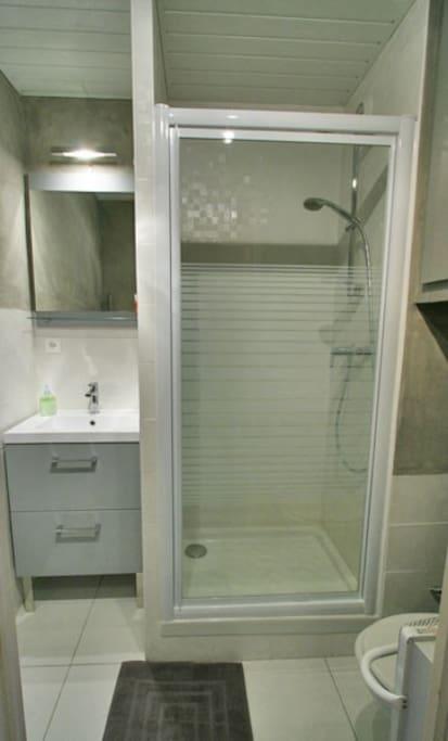 salle d'eau rénovée récemment.