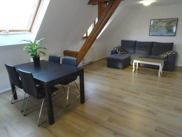 Bel appartement lumineux au pied des Vosges