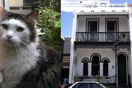Classic Fitzroy Terrace (w/ cat) - walk to Tennis - Fitzroy - Huis
