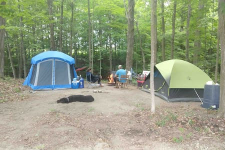 Gristmill Campsite overlooking peaceful brook.