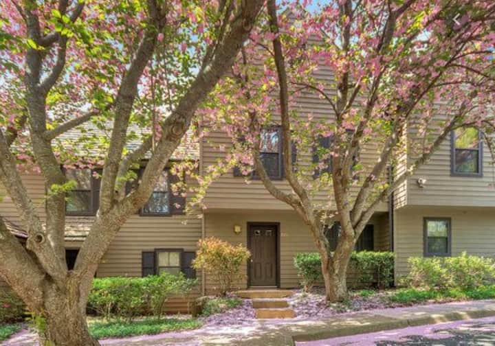 Great 3 BR home near UVA and Downtown!