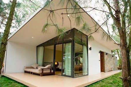 Private Villa in Resort 5 star - Thành phố Vĩnh Yên - Villa
