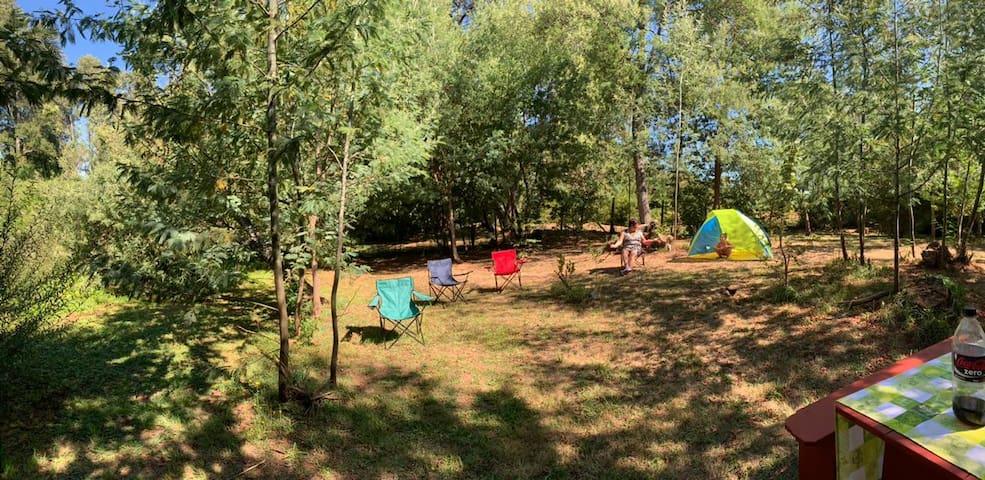 Zona de camping para disfrutar junto a la naturaleza.