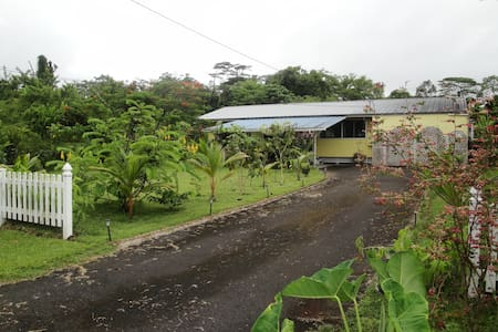 Cozy house in a coqui-ful jungle - Pāhoa - Huis
