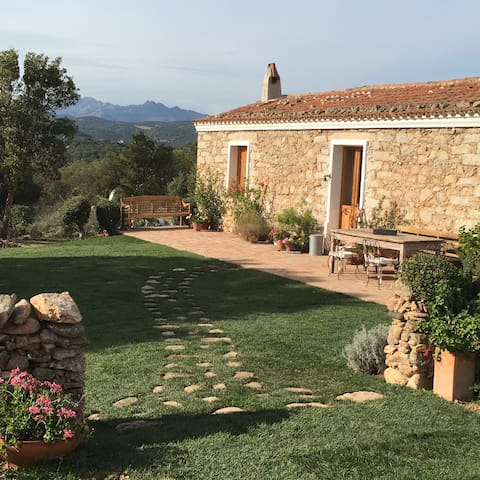 Sardaigne Bio Vacance à Monti . 7 km de Olbia