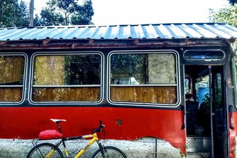 Into the wild. Casa colectivo en la montaña.