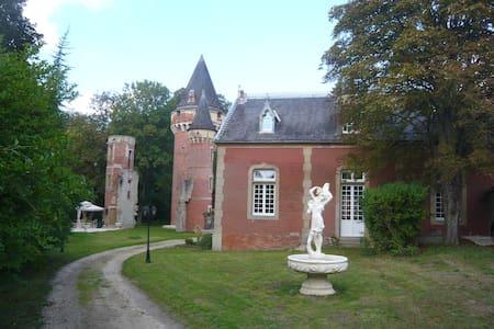 DEMEURE DE JUINE  TOUR - Morigny-Champigny