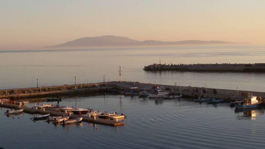 Sapore di Grecia - Plomari - Appartement