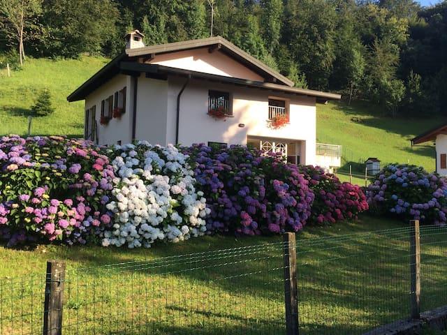 Casa vacanze immersa nel verde - Maggio