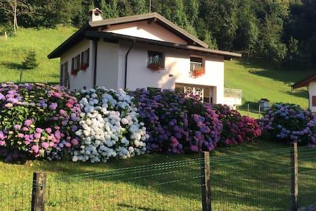 Casa vacanze immersa nel verde - Maggio - Wohnung