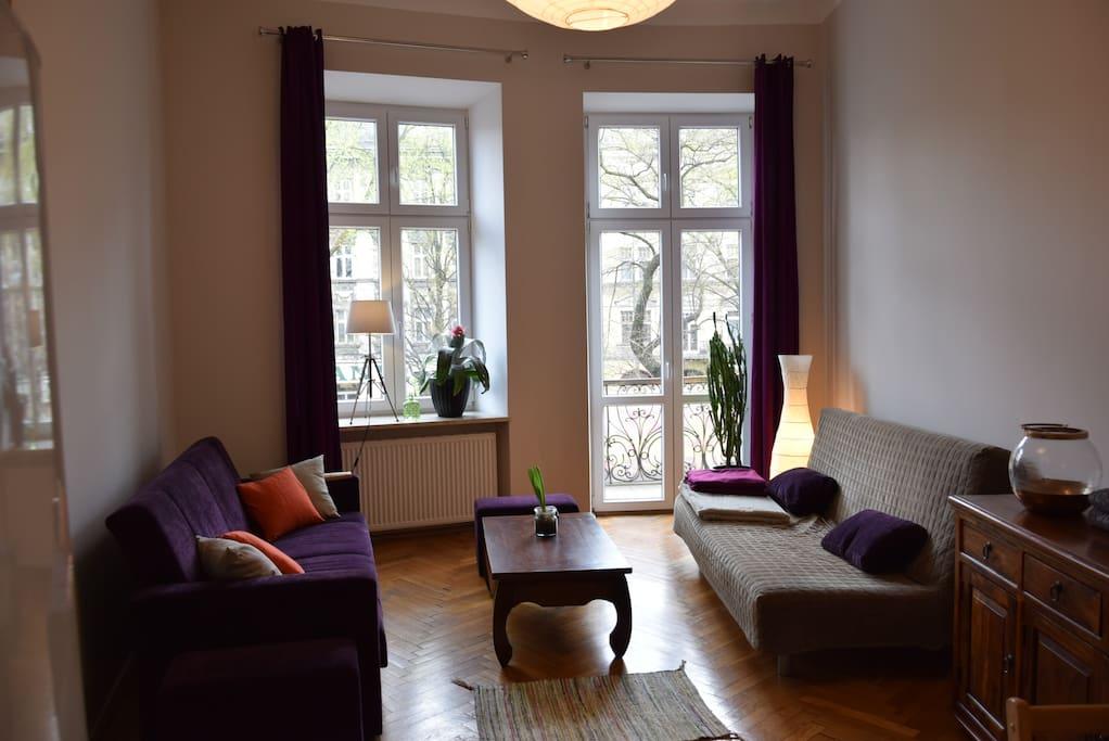 2 double sofa-beds in the living room. In total flat gives sleeping space for 6 people. Salon-umeblowany w 2 sypialne sofy dzięki czemu w apartamencie może spać aż 6 osób