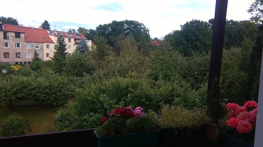 Cozy&sunny room, 15 min to the center - Wrocław - Appartement