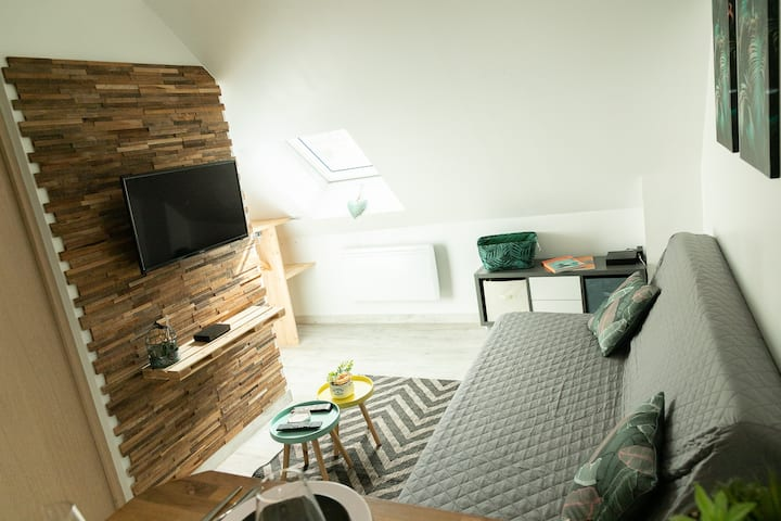 ★ T2 Angers centre ★ BED I HOME ★ Netflix★ Wifi ★