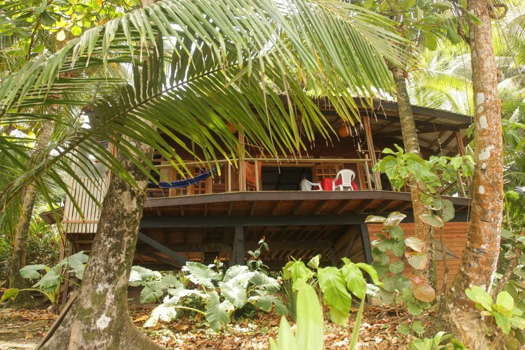 Our home in the jungle