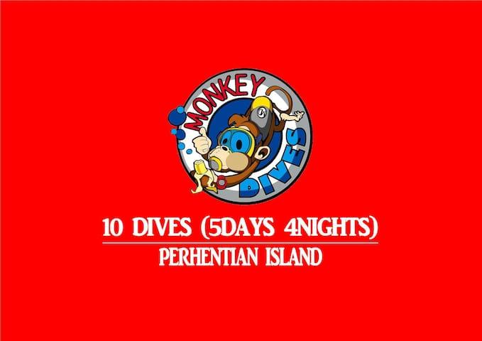 MonkeyDives - 10 Fun Dives