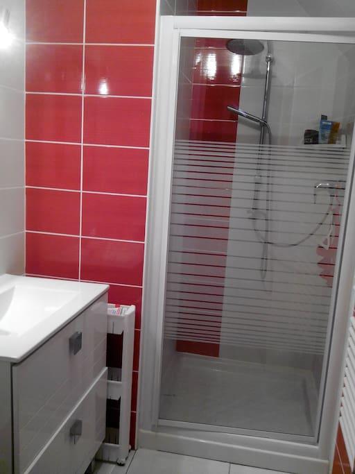 salle de bain petite mais fonctionnelle à l'usage unique des hôtes