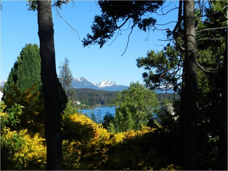 Vista al lago desde la cabaña