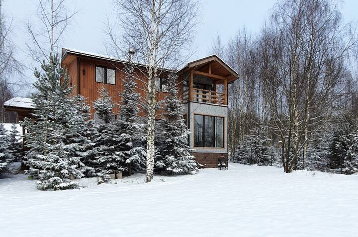 Скандинавский дом на краю заповедного леса