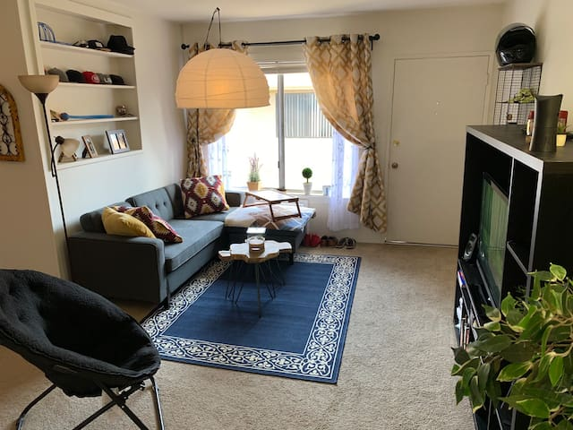 Cozy apartment, close to downtown and beach
