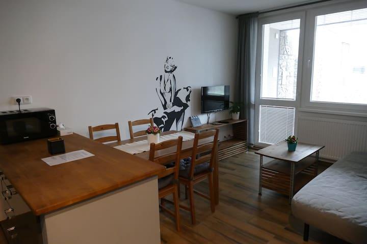 Apartment Rezidence La-1A