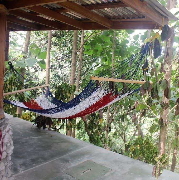 Hammock in a jungle setting