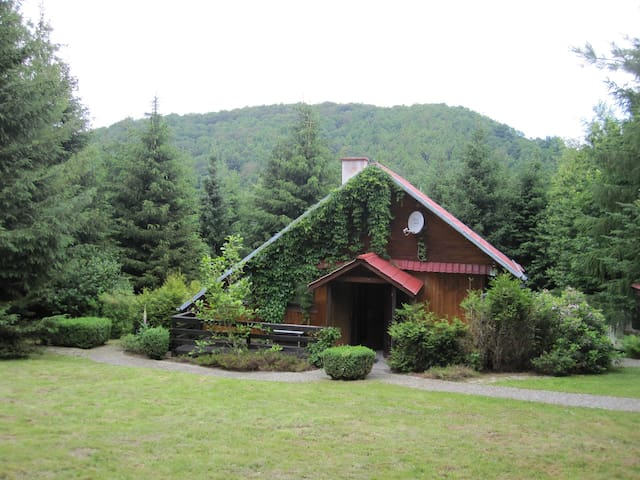 House on the Hill - Bystrzyca Górna - Xalet