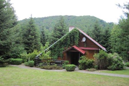 Dom na wzgórzu - Bystrzyca Górna - Bungalo
