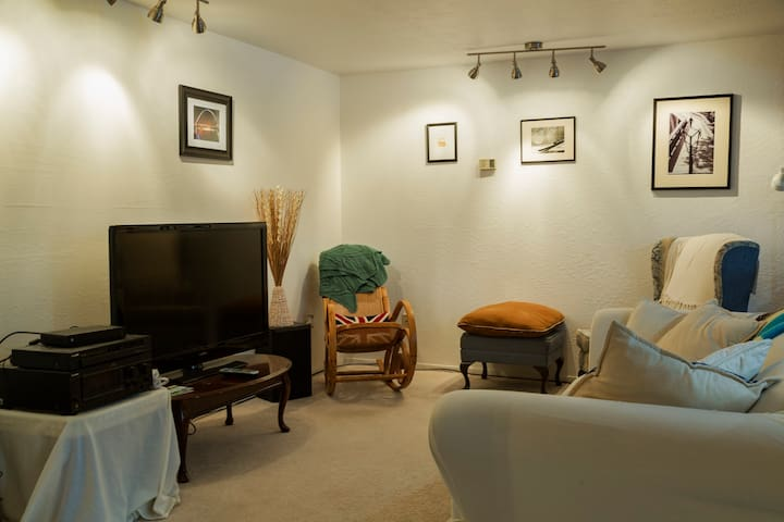"""Living room with a 42"""" tv with tons of channels, and a Nintendo Wii."""