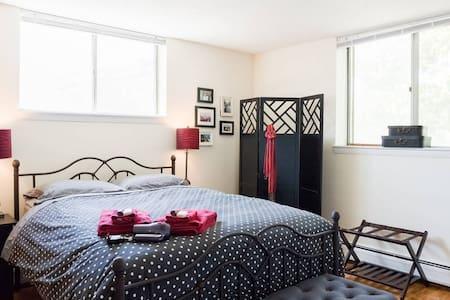Private Bedroom in Spacious Brighton Apartment - Boston