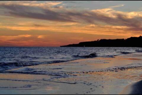 """""""Flipping Flounder"""" Florida Coastal Cottage"""