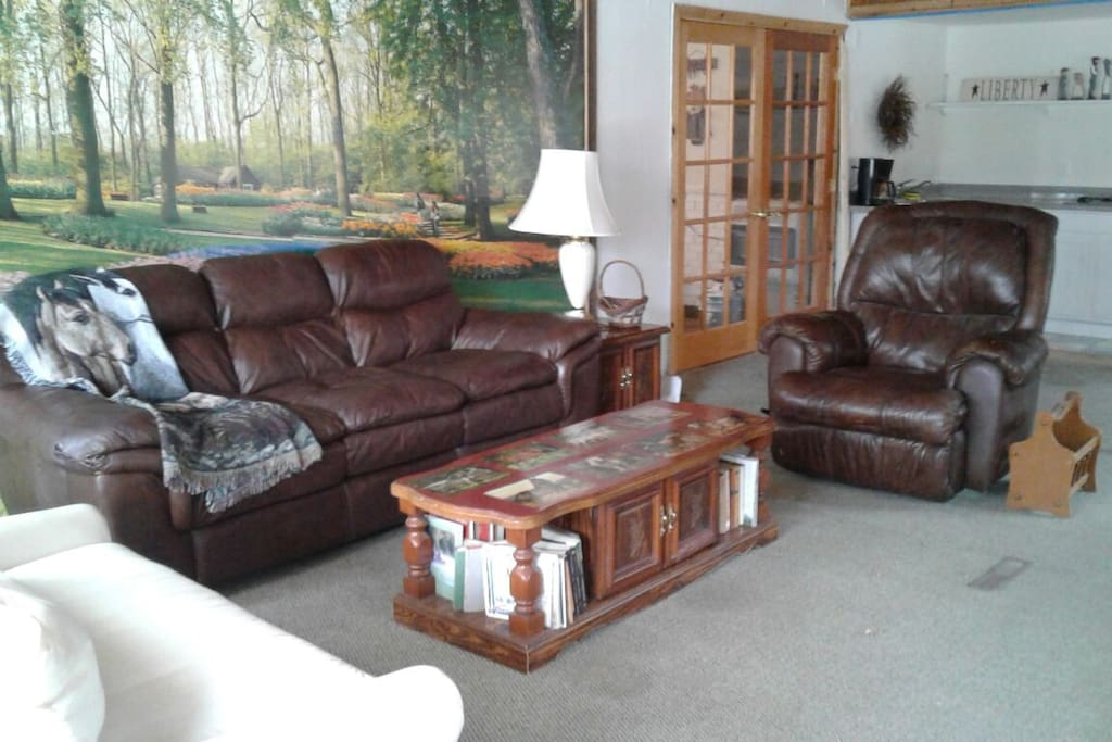 Very spacious living area with an additional 2 pull out couches