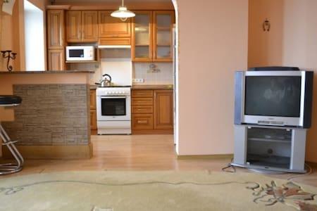 Уютная квартира- студия в центре
