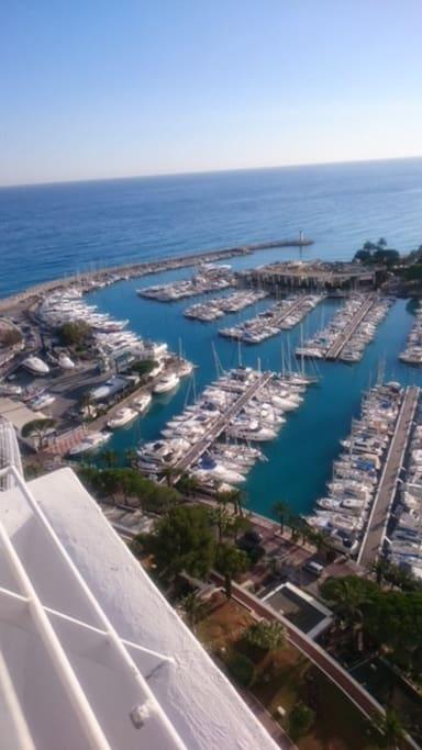 Le port de Marina
