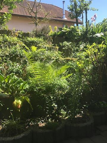 Blick vom Schlafzimmer ( Souterrain) in den Garten