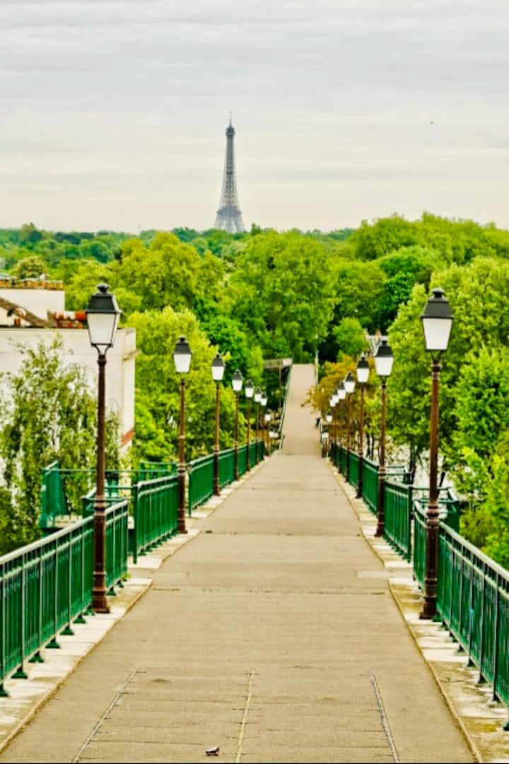 Coming back to Paris