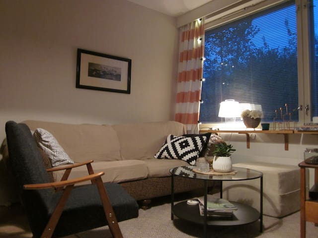 Cute studio in the heart of Vaasa - Vaasa - Apartment