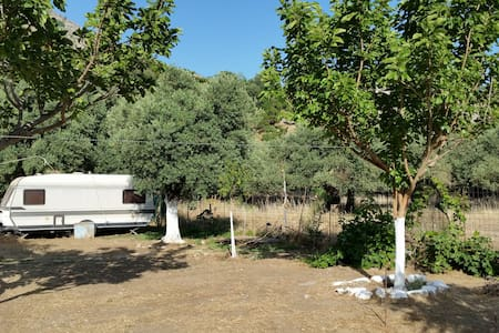 Natural living In a caravan! - Chania - Karavan