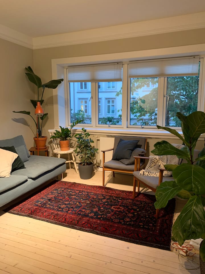Luxuriously refurbished appartment in Grünerløkka.