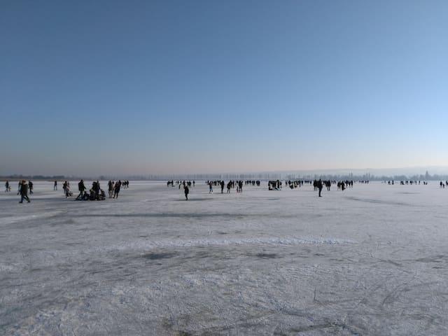 Schlittschuhfahren an der Insel Reichenau im Januar 2017