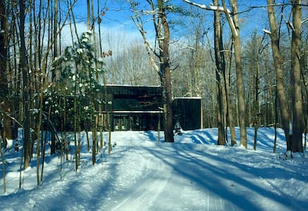 Modern Cabin in the Woods 1 - Fennville - House