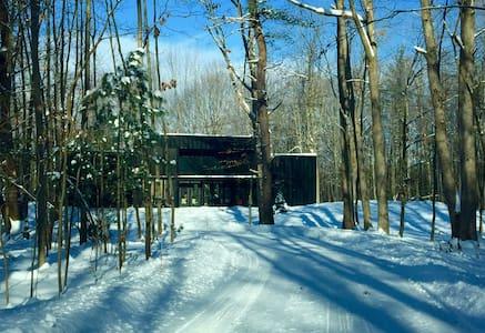 Modern Cabin in the Woods 1 - Fennville - บ้าน