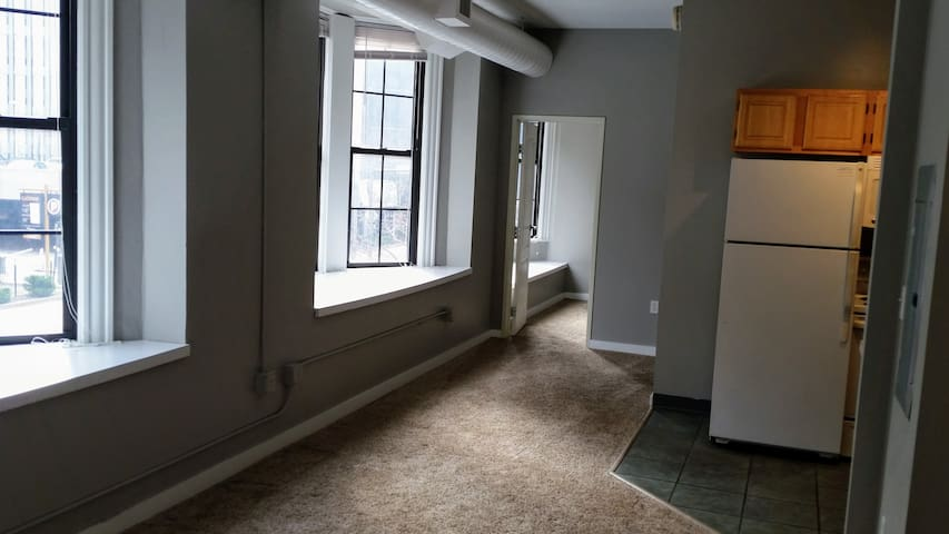 Convenient & Clean Private Room in Downtown CLE - Cleveland - Appartement