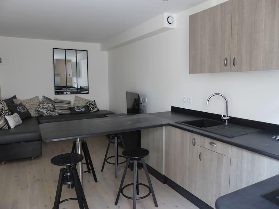cuisine et salon avec sofa pouvant faire lit 140