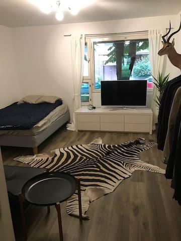 A spacious studio in Helsinki