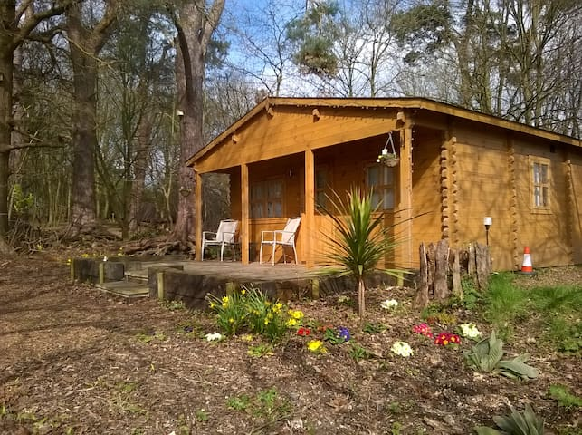 Woodland Lodge @ West Stow Pods