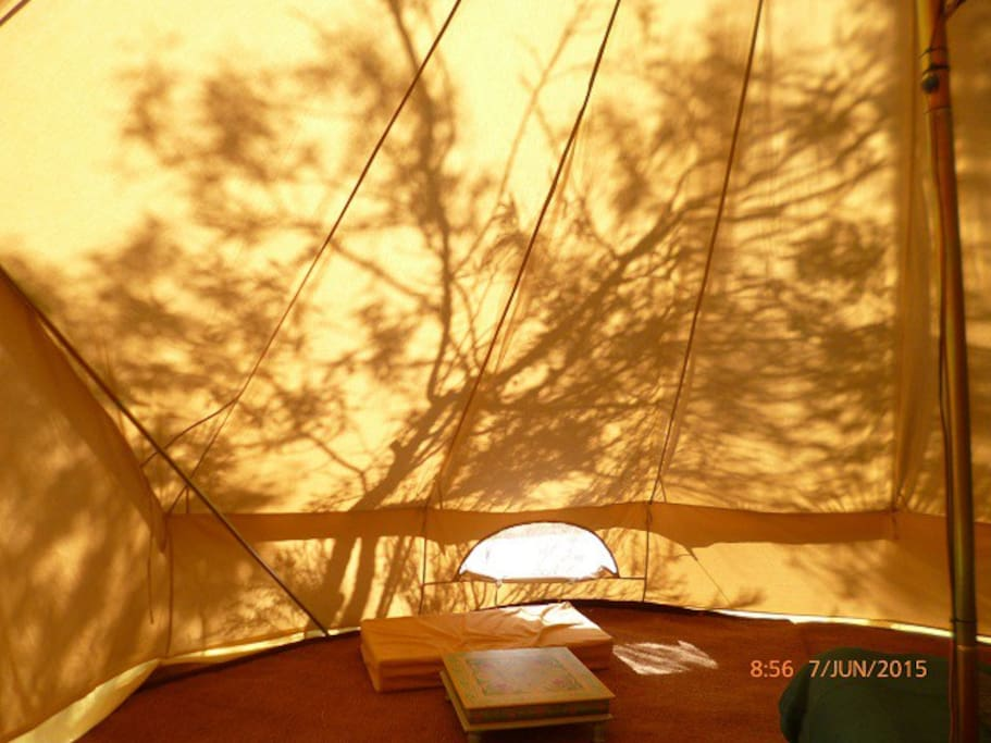 Shadows in the tent.