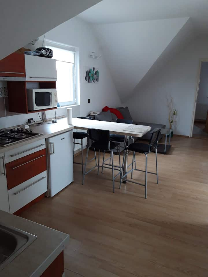 apartment for 4+1 persons in Balatonakali R83046